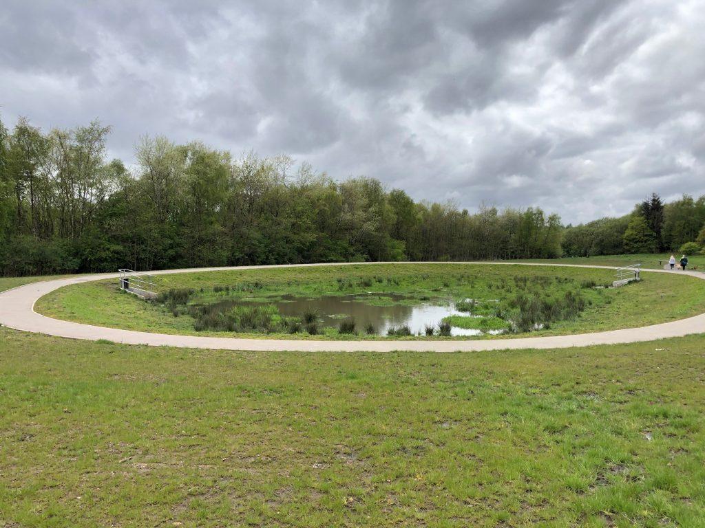 Braes Park SuDS feature